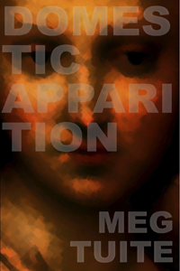 """""""Domestic Apparition"""" by Meg Tuite reviewed by Agnes Morton"""